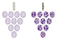 Polygonales Netz Mesh Grape Berry und Mosaik-Ikone lizenzfreie abbildung
