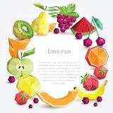 Polygonfruchtsatz, runder Rahmen lizenzfreie abbildung