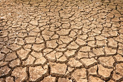 Polygons of desiccation caused by drought Royalty Free Stock Photography