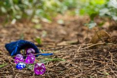 Polyhedral dice in a woodland environment. A set of polyhedral dice used for role playing games such as Dungeons & Dragons, the dice are used to determine how Stock Image