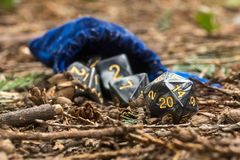 Polyhedral dice in a woodland environment. A set of polyhedral dice used for role playing games such as Dungeons & Dragons, the dice are used to determine how Stock Photo