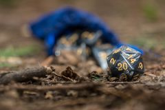 Polyhedral dice in a woodland environment. A set of polyhedral dice used for role playing games such as Dungeons & Dragons, the dice are used to determine how Stock Photography