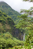 Polynesia. Tahiti.The mountain and falls Royalty Free Stock Image