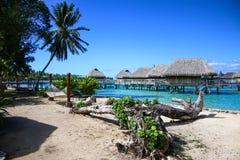 Polynesian деревня - Moorea Стоковые Фото