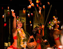 Polynesian dancers perform traditional dance with flowers Royalty Free Stock Photos
