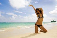 Polynesian girl in a black bikini. A beautiful Polynesian girl in a black bikini kneeing on a secluded Hawaii beach at the ocean's edge with a plumeria blossom Stock Photography