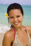 Polynesian girl in a pink bikini by ocean. Portrait of a beautiful young Polynesian girl in a pink bikini standing  at a Hawaii beach at midday with a flower in Stock Photography