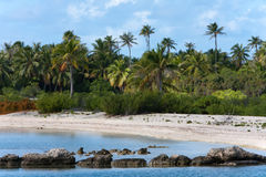 Polynesian landscape - seacoast with palm trees Stock Images