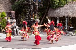 polynesian show Royaltyfria Bilder