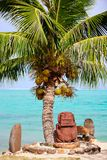 Polynesian statue under the palm Royalty Free Stock Photos
