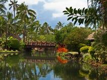 Polynesisch dorp. Hawaï. royalty-vrije stock afbeelding