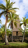 Polynesische hut op het Eiland van Oahu in Hawaï Royalty-vrije Stock Afbeelding