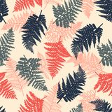 Polypodiophyta. Seamless pattern with ferns. Background with plants in red, blue and gray colors. Vector illustration Royalty Free Stock Photos