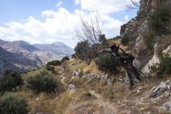 从Polyrenia,克利特,希腊的道路 免版税图库摄影
