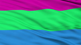 Polysexual Pride Close Up Waving Flag. Polysexual Pride Flag, Close Up Realistic 3D Animation, Seamless Loop - 10 Seconds Long stock footage