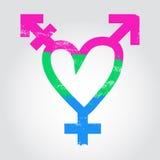 Polysexual stolthetflagga i en form av hjärta med transgendersymbol Arkivfoto