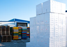 Polystyrene boxes. Lots of white polystyrene boxes piled up on transport palettes. Outdoors, winter Royalty Free Stock Image