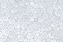 Polystyrene foam texture. A close up of polystyrene foam texture Royalty Free Stock Images