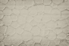 Polystyrene texture background, close up Stock Image