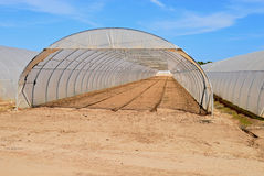 A polythene Greenhouse Royalty Free Stock Images