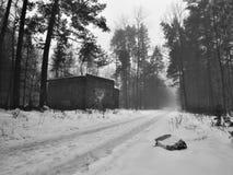 Polythene halsu lying on the beach w śnieżnej ścieżce prowadzi wokoło pustego domu w republika czech Obraz Stock
