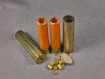 Polythene shell Stock Photo