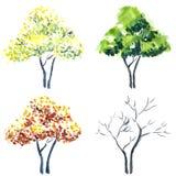 pomalowany drzewa ilustracji