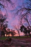 pomalowany niebo Fotografia Stock