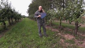 Pomar de maçã da verificação do agrônomo video estoque