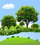 Pomar de maçã da paisagem Fotos de Stock Royalty Free