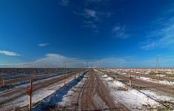 Pomar fertilizado recentemente plantado em Bakersfield Califórnia Imagem de Stock