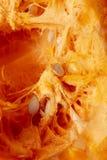 Pomarańczowa braja z ziarnami w bani jako tło fotografia stock