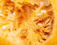 Pomarańczowa braja z ziarnami w bani jako tło obrazy stock