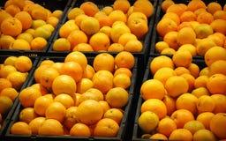 Pomarańcz pudełka Obrazy Royalty Free