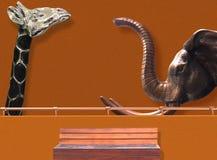 Pomarańcze ściana z żyrafą i słoniem fotografia stock