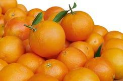 pomarańcze Fotografia Royalty Free