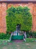 Pomarańcze barwiąca cegły kamienna ściana z grunge zieleni metalu siatki drzwi zakrywającym z łukowatym drzewem, zieloną trawą i  Obraz Stock
