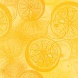 Pomarańcze cytrus Tapetowy bezszwowy wzór z ręka rysującym illus ilustracja wektor