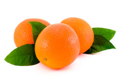 pomarańcze dojrzała Fotografia Stock