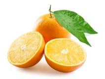 pomarańcze dojrzała Obraz Stock