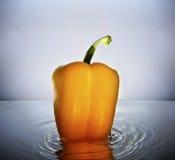 pomarańcze dzwonkowy wyśmienicie pieprz Zdjęcie Stock