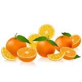 Pomarańcze granica Zdjęcie Stock