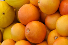 Pomarańcze i melony obrazy royalty free
