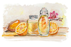 Pomarańcze i szkło soku wciąż życie odizolowywający royalty ilustracja