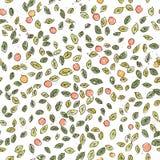 Pomarańcze, jagody, liście w lecie Biała i zielona prosta ilustracja Zdjęcie Stock