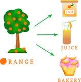 Pomarańcze - jak ono może używać Zdjęcie Royalty Free
