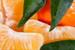 Pomarańcze, mandarynka zdjęcia stock
