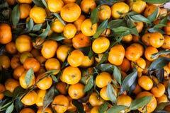 Pomarańcze, mandarynki tło i tekstura, Zdjęcie Royalty Free