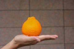 Pomarańcze na ręce Obraz Royalty Free