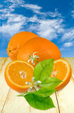 Pomarańcze na stole obraz royalty free
